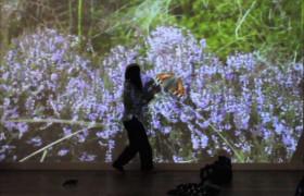 CrossingTheLine_Film_Butterfly copy