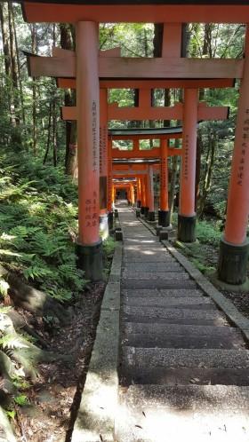 Fushimi Inari shrine. SW 29/05