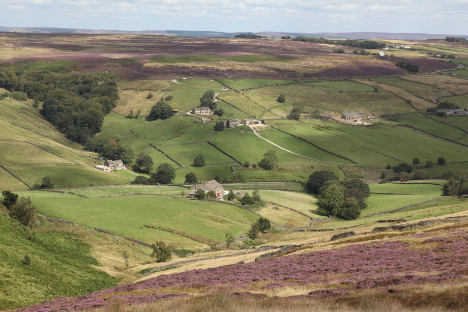 Whitestone Clough from Crow Hill